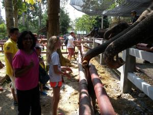 That's me after feeding an elephant