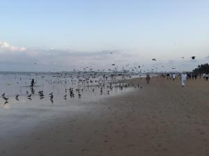 Juhu Beach, Mumbai, in the morning.